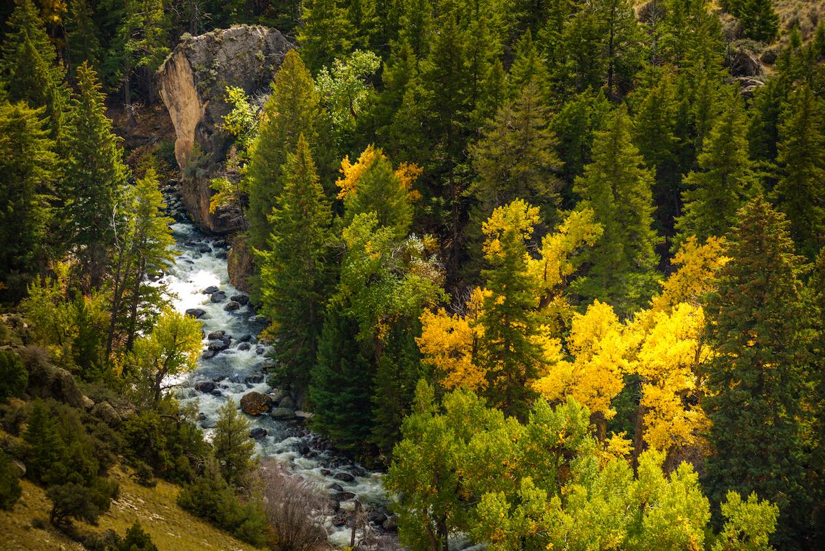 Tensleep Creek in Wyoming