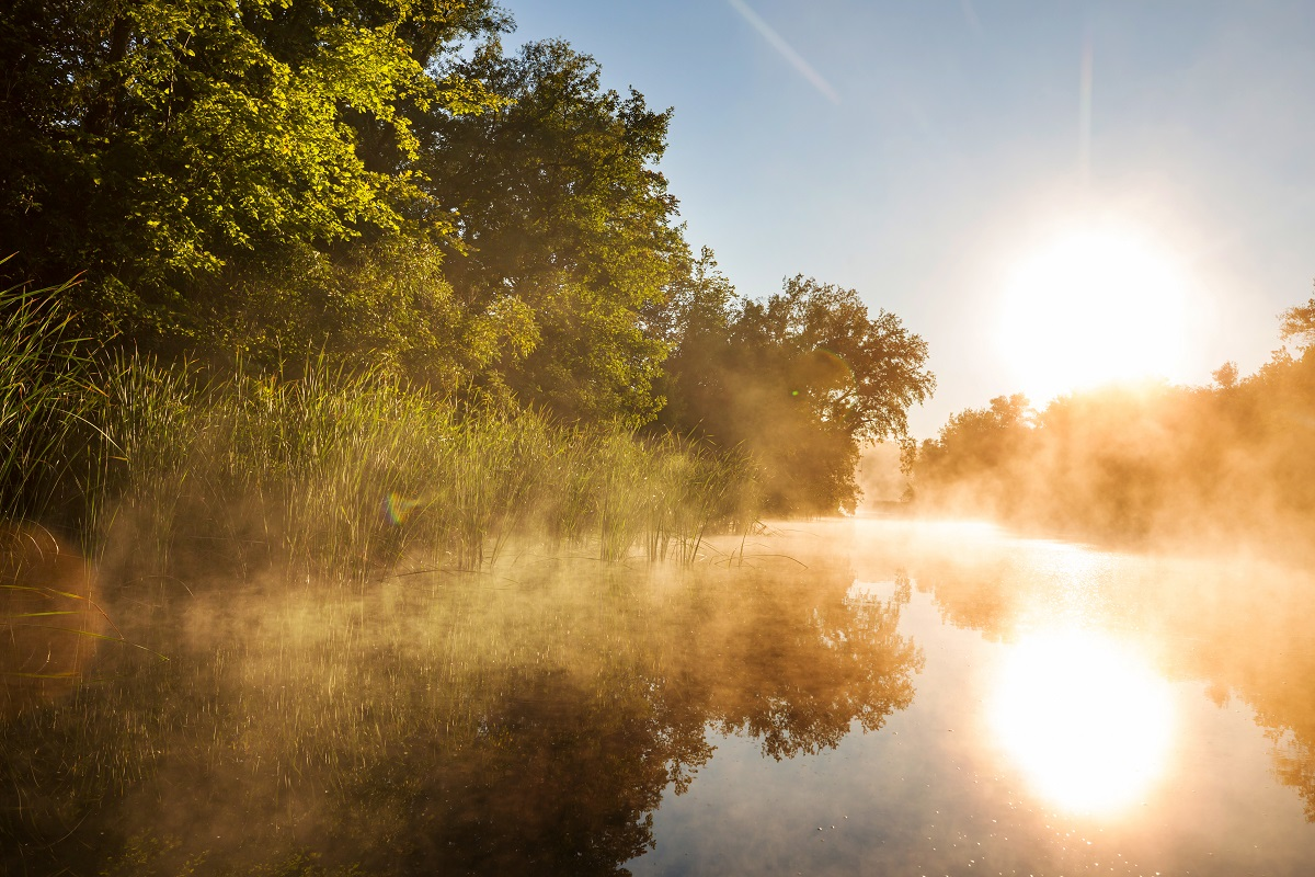 A foggy river in the morning
